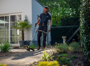 Best Gardening Tips For Plant Lovers