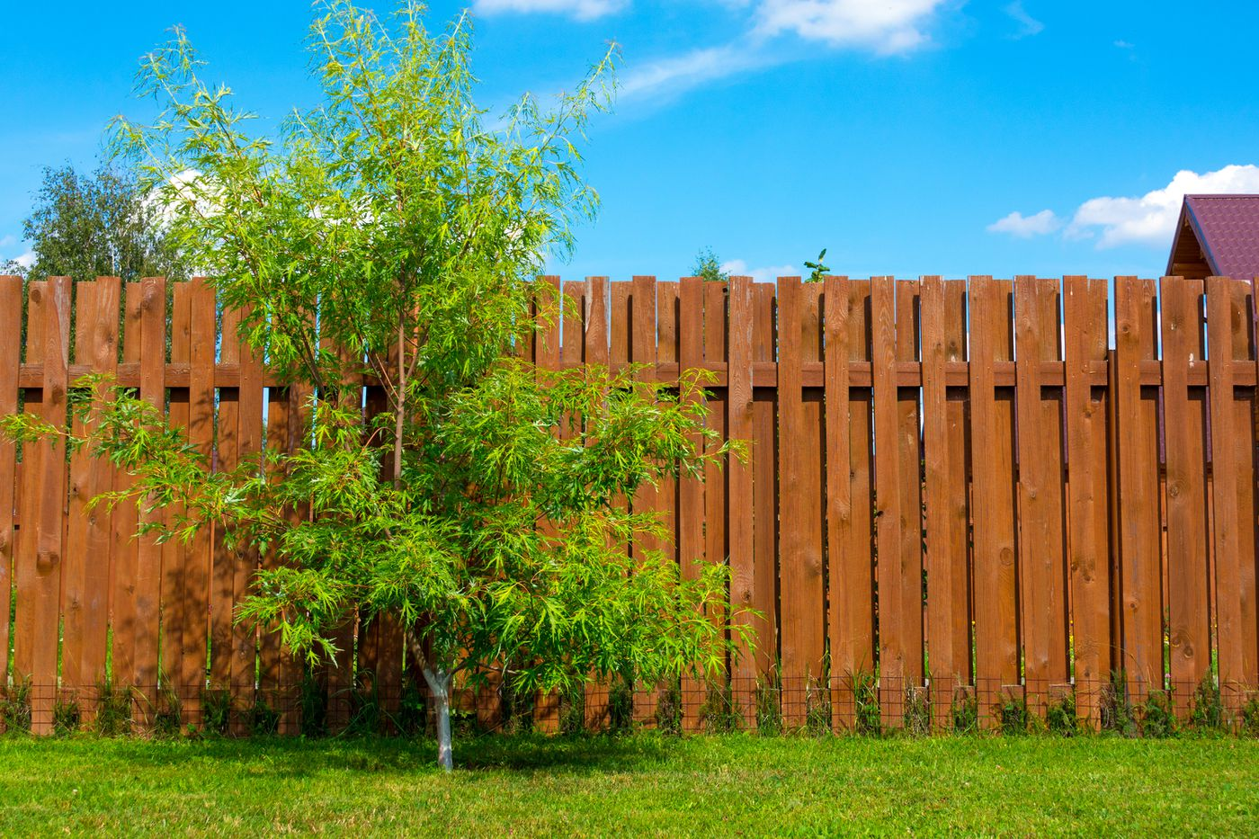 Best Fence Building